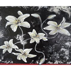 Black and White Lilies Magic Photo Cubes