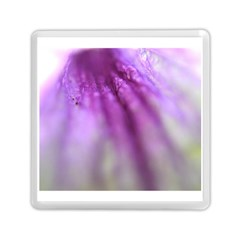 Purple Flower Pedal Memory Card Reader (Square)