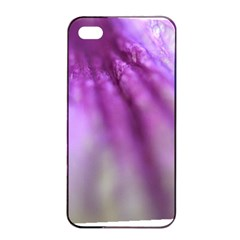Purple Flower Pedal Apple Iphone 4/4s Seamless Case (black)