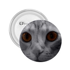 Funny Cat 2 25  Buttons
