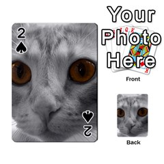 Funny Cat Playing Cards 54 Designs