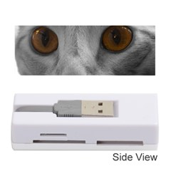 Funny Cat Memory Card Reader (Stick)