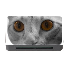 Funny Cat Memory Card Reader With Cf
