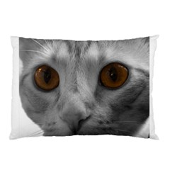 Funny Cat Pillow Cases (Two Sides)