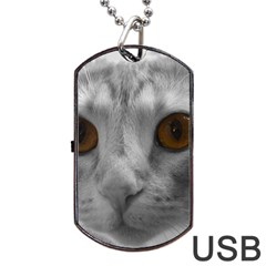 Funny Cat Dog Tag USB Flash (One Side)