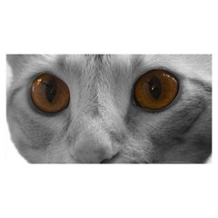 Funny Cat YOU ARE INVITED 3D Greeting Card (8x4)