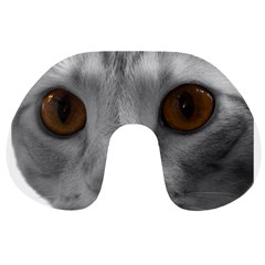 Funny Cat Travel Neck Pillows