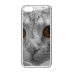Funny Cat Apple Iphone 5c Seamless Case (white)