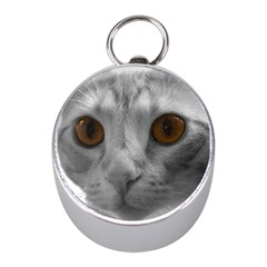 Funny Cat Mini Silver Compasses