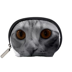 Funny Cat Accessory Pouches (small)