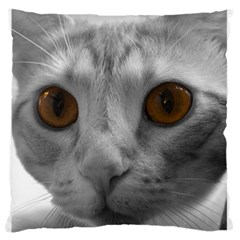 Funny Cat Large Flano Cushion Cases (one Side)