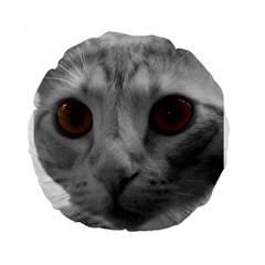 Funny Cat Standard 15  Premium Flano Round Cushions