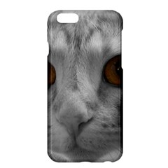 Funny Cat Apple iPhone 6 Plus Hardshell Case