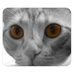 Funny Cat Double Sided Flano Blanket (small)