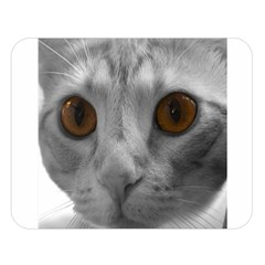 Funny Cat Double Sided Flano Blanket (large)