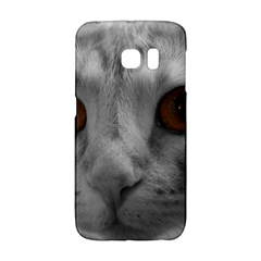 Funny Cat Galaxy S6 Edge