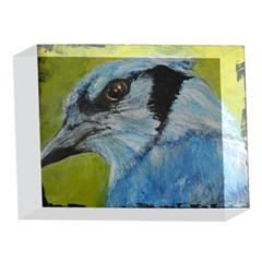 Blue Jay 5 x 7  Acrylic Photo Blocks