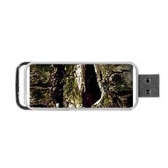A Deeper Look Portable USB Flash (Two Sides)