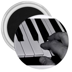The Piano Player 3  Magnets