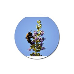 Bumble Bee 1 Magnet 3  (round)