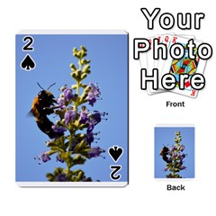 Bumble Bee 1 Playing Cards 54 Designs