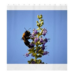 Bumble Bee 1 Shower Curtain 66  X 72  (large)