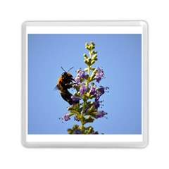 Bumble Bee 1 Memory Card Reader (square)