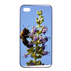 Bumble Bee 1 Apple Iphone 4/4s Seamless Case (black)