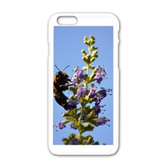 Bumble Bee 1 Apple iPhone 6 White Enamel Case