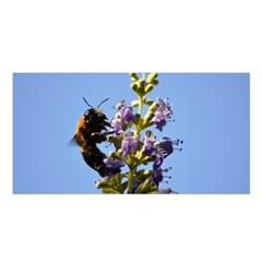 Bumble Bee 1 Satin Shawl