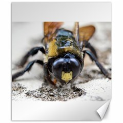 Bumble Bee 2 Canvas 8  X 10