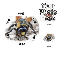 Bumble Bee 2 Playing Cards 54 (Round)