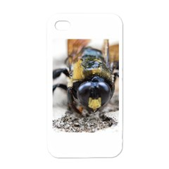 Bumble Bee 2 Apple Iphone 4 Case (white)