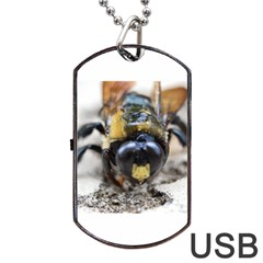 Bumble Bee 2 Dog Tag USB Flash (One Side)