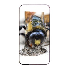 Bumble Bee 2 Apple iPhone 4/4s Seamless Case (Black)