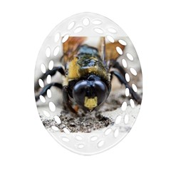Bumble Bee 2 Oval Filigree Ornament (2 Side)
