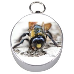 Bumble Bee 2 Silver Compasses