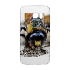 Bumble Bee 2 Galaxy S6 Edge