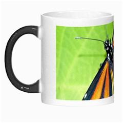 Butterfly 2 Morph Mugs