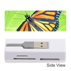 Butterfly 2 Memory Card Reader (stick)