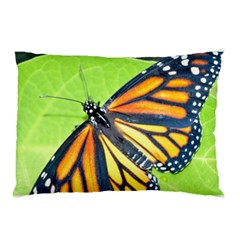 Butterfly 2 Pillow Cases (two Sides)