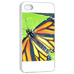 Butterfly 2 Apple iPhone 4/4s Seamless Case (White)