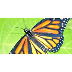 Butterfly 2 You Are Invited 3d Greeting Card (8x4)