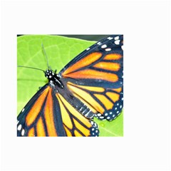 Butterfly 2 Small Garden Flag (Two Sides)