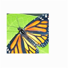 Butterfly 2 Large Garden Flag (two Sides)