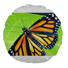 Butterfly 2 Large 18  Premium Round Cushions