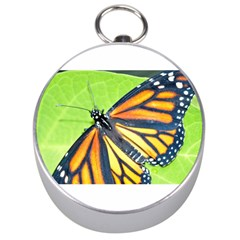 Butterfly 2 Silver Compasses