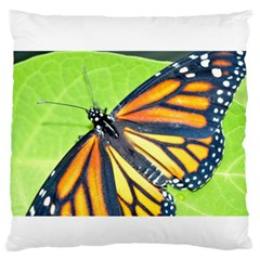 Butterfly 2 Large Flano Cushion Cases (One Side)