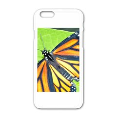 Butterfly 2 Apple iPhone 6 White Enamel Case
