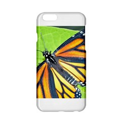 Butterfly 2 Apple iPhone 6 Hardshell Case